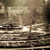 27 · Winter garden, I