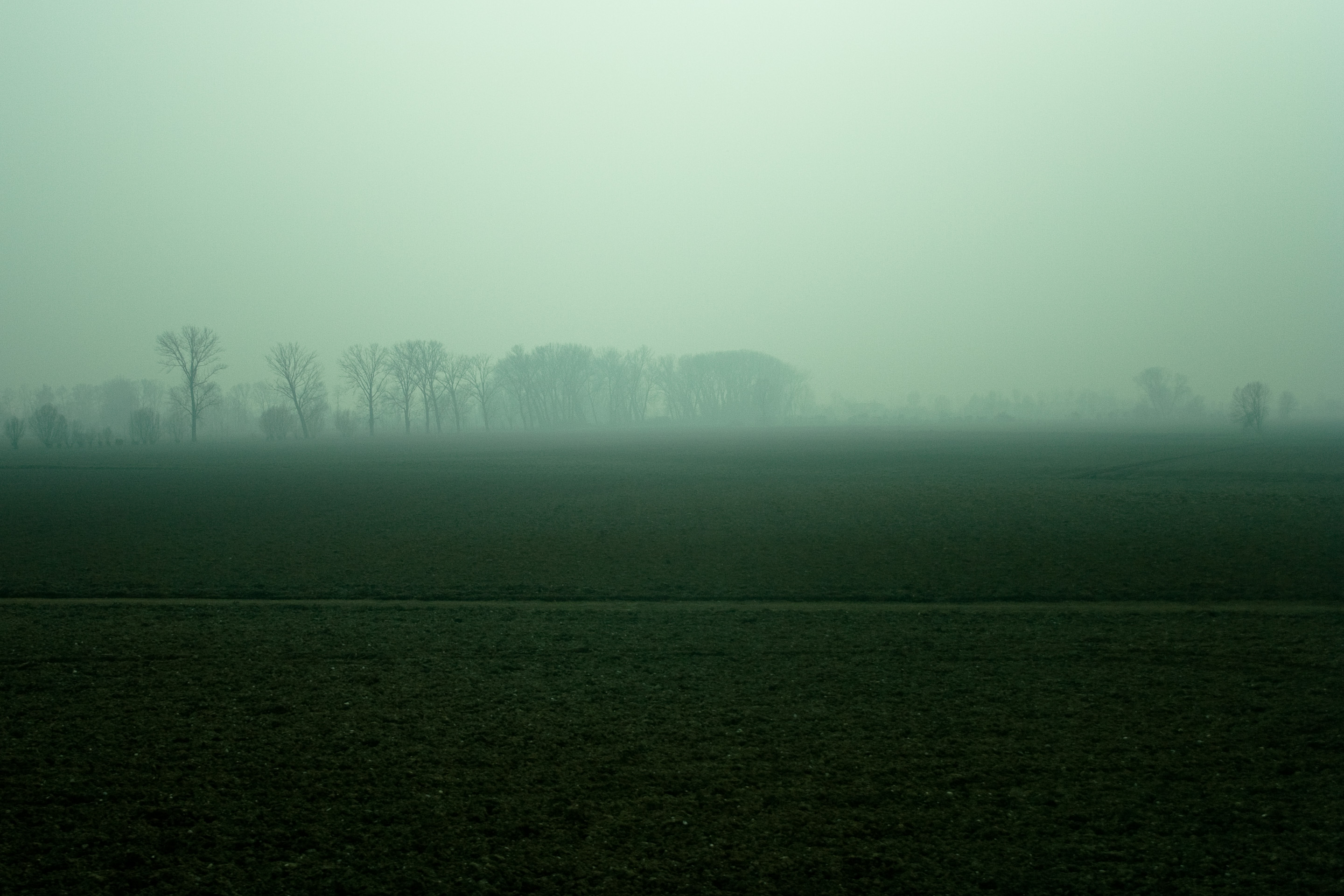 50 · Sunset in the mist, I Click to view previous post