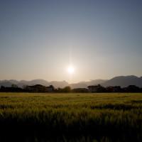 126 · Sunset