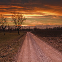 156 · Riding the sunset, I Click to view previous post