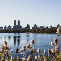 167 · Reservoir, Central Park